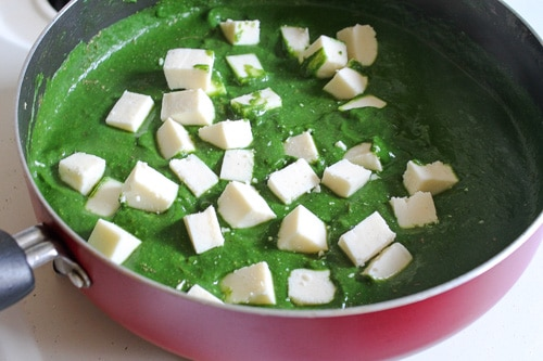 added paneer cubes in spinach gravy