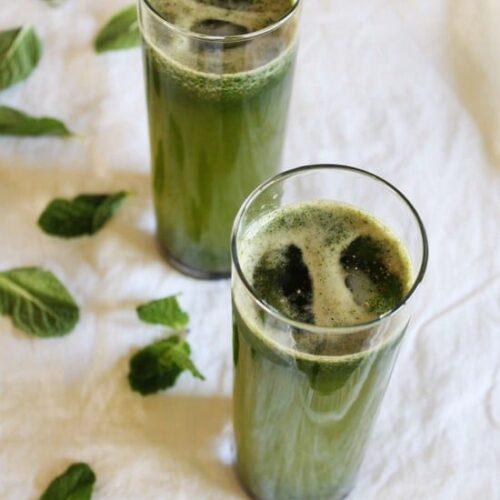 Mint Juice Recipe | Pudina sherbet | Indian style mint juice