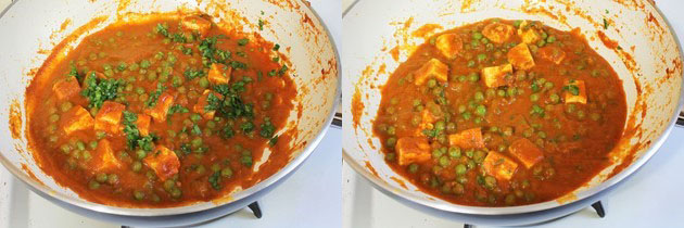 matar paneer garnished with cilantro