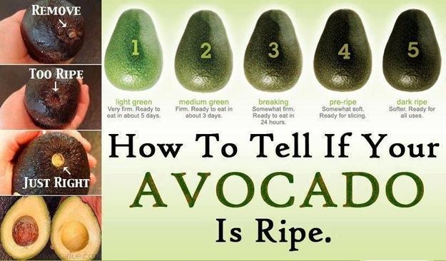 avocado-ripeness