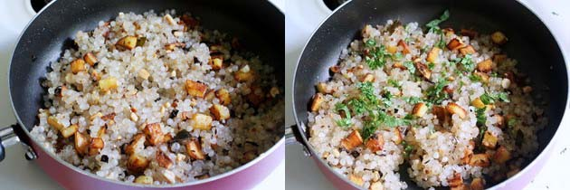 sabudana khichdi is ready