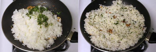 Combine the rice and jeera rice tempering