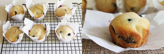Eggless Blueberry Lemon Muffins Recipe   Vegan Muffins