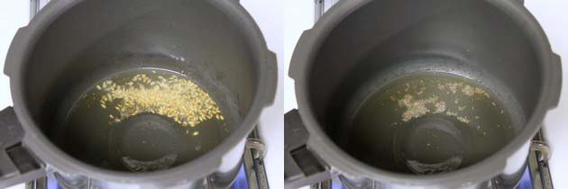 tempering of mustard seeds and cumin seeds