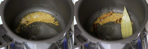 Moong dal Khichdi recipe | How to make moong dal khichdi