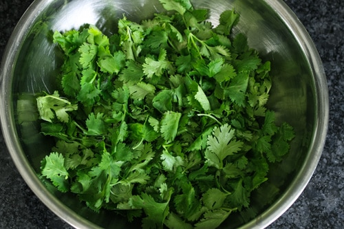cilantro leaves in a bowl