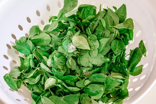 Sprinkle salt over methi leaves