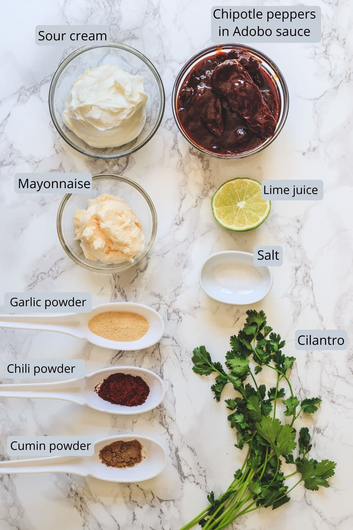 Image of ingredients used in chipotle sauce. Showing sour cream, mayo, chipotle peppers, cilantro, lime, salt, garlic, cumin and chili powder.