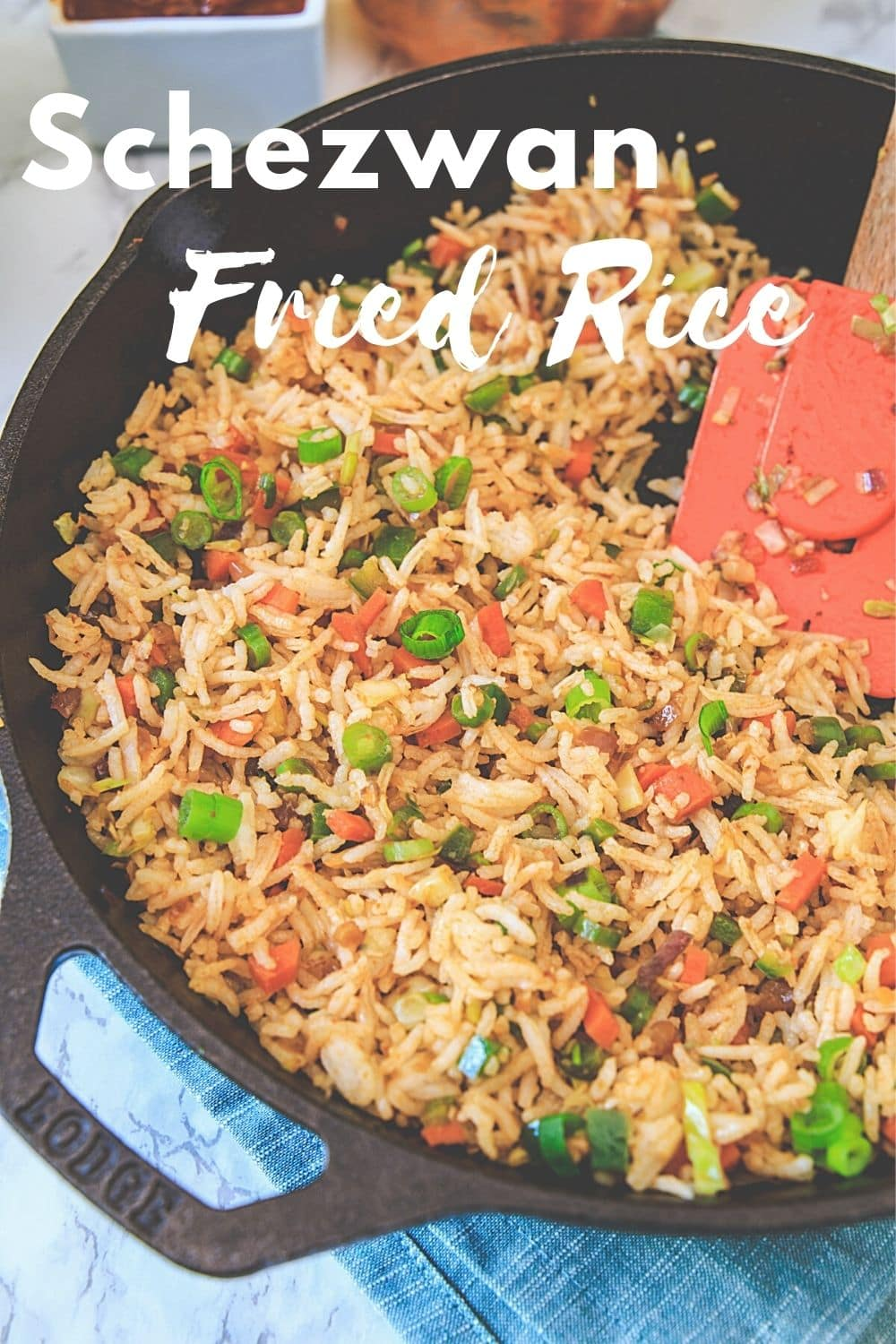 schezwan fried rice pin