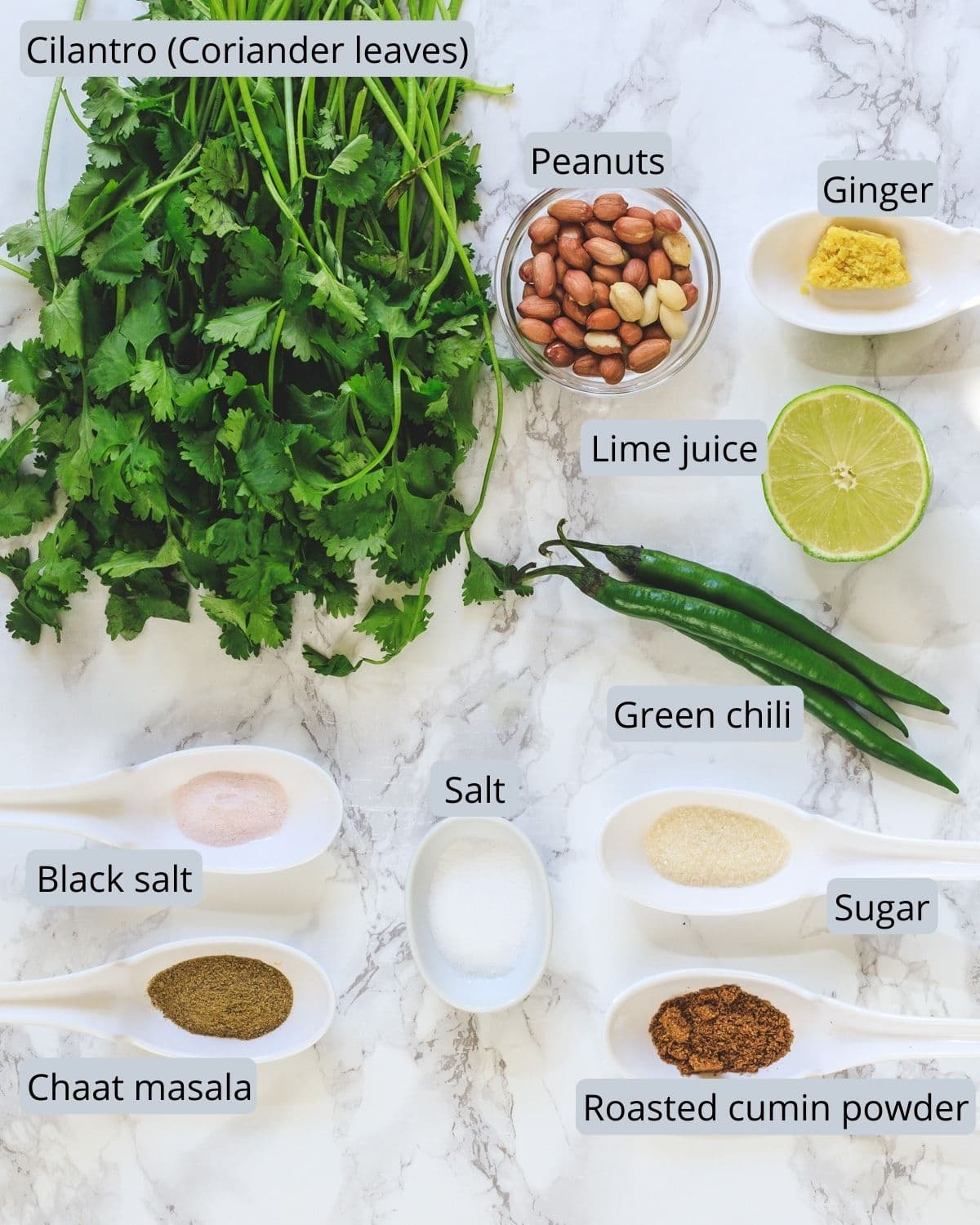 Ingredients used in making cilantro chutney on the marble surface.
